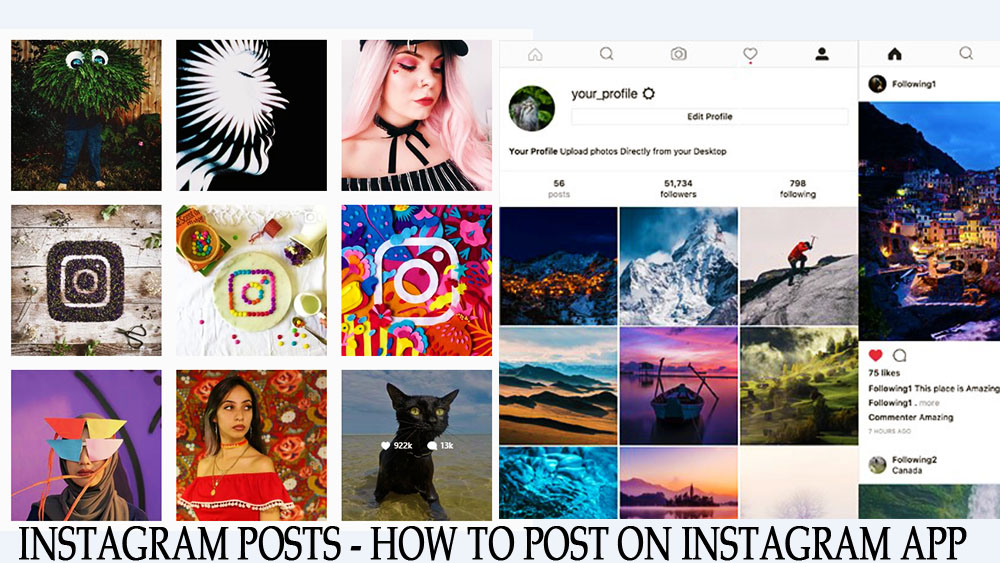 Instagram Posts - What To Post On Instagram Account