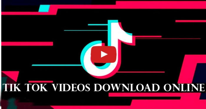 Tik Tok Videos Download Online - How to Download TikTok videos Online