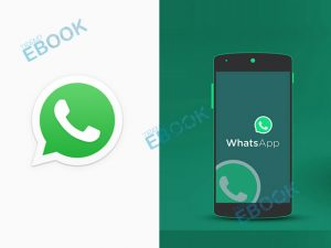 WhatsApp - Get Started with WhatsApp for Android, iPhone, PC & Mac   WhatsApp App Download