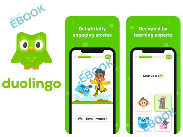 Duolingo App - Download Free Duolingo App for Android & iOS