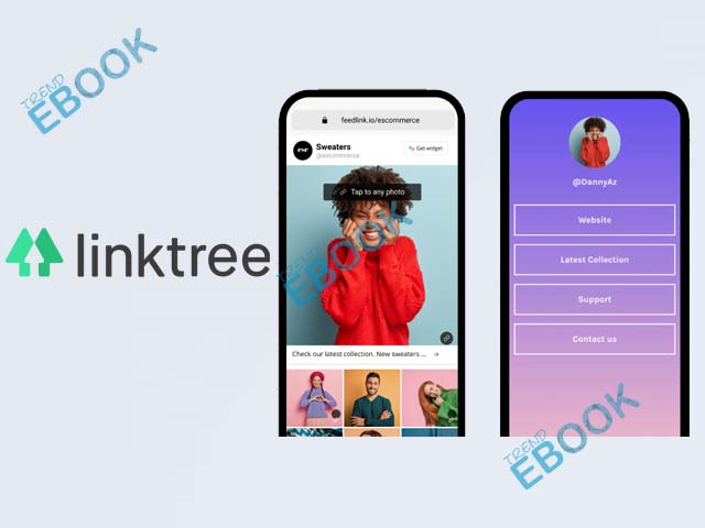 Linktree - How to Make a Linktree   Linktree Account
