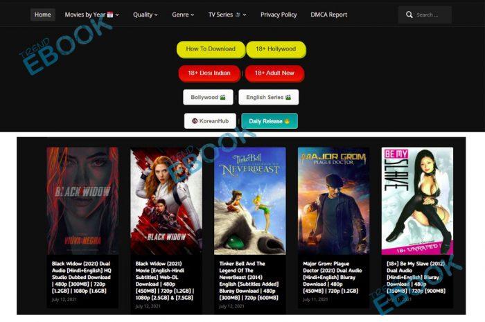 Hubflix - Bollywood, Hollywood Movies Download Website   Hubflix.com